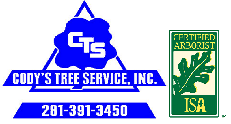 Cody's Tree Service Katy TX