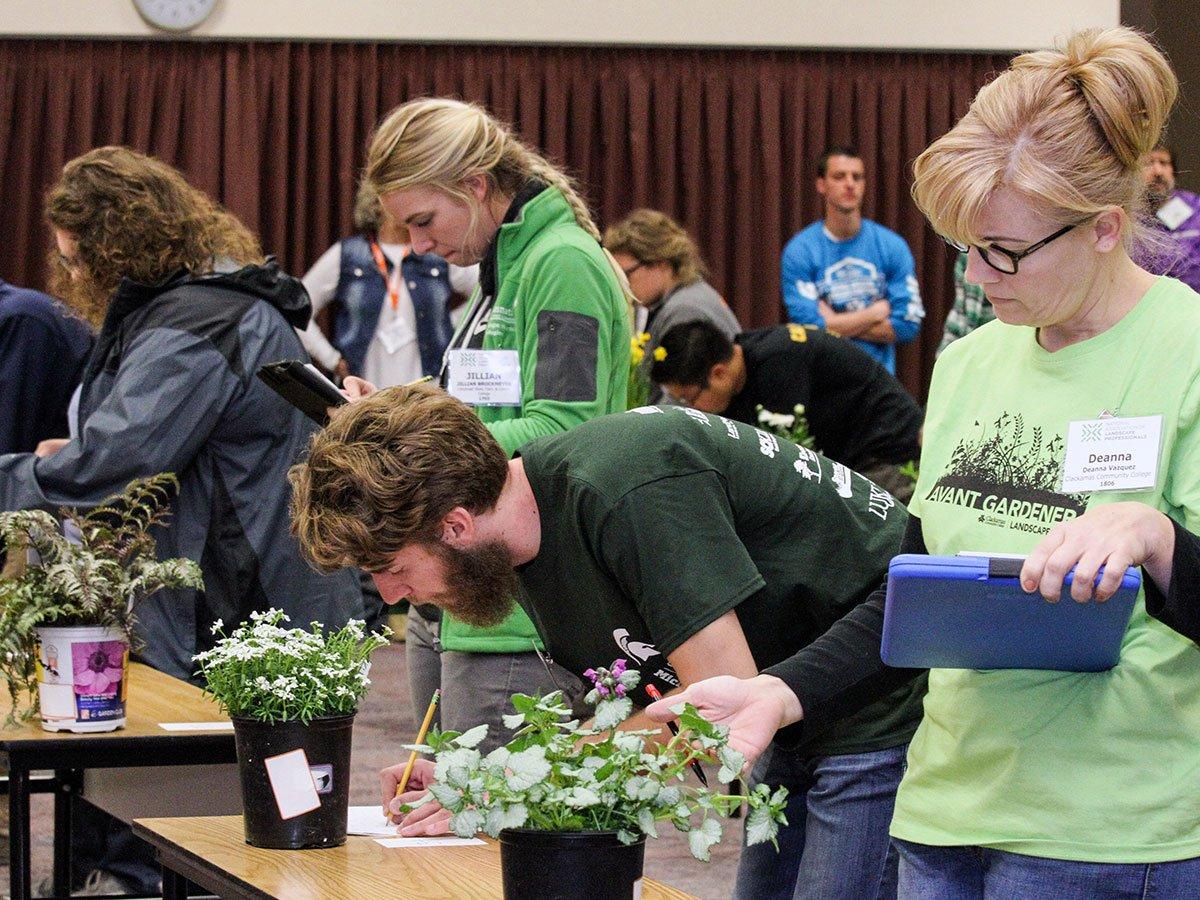 ISA Arborist Certification Exam