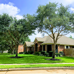 Tree Care Tips for Healthy Texas Trees